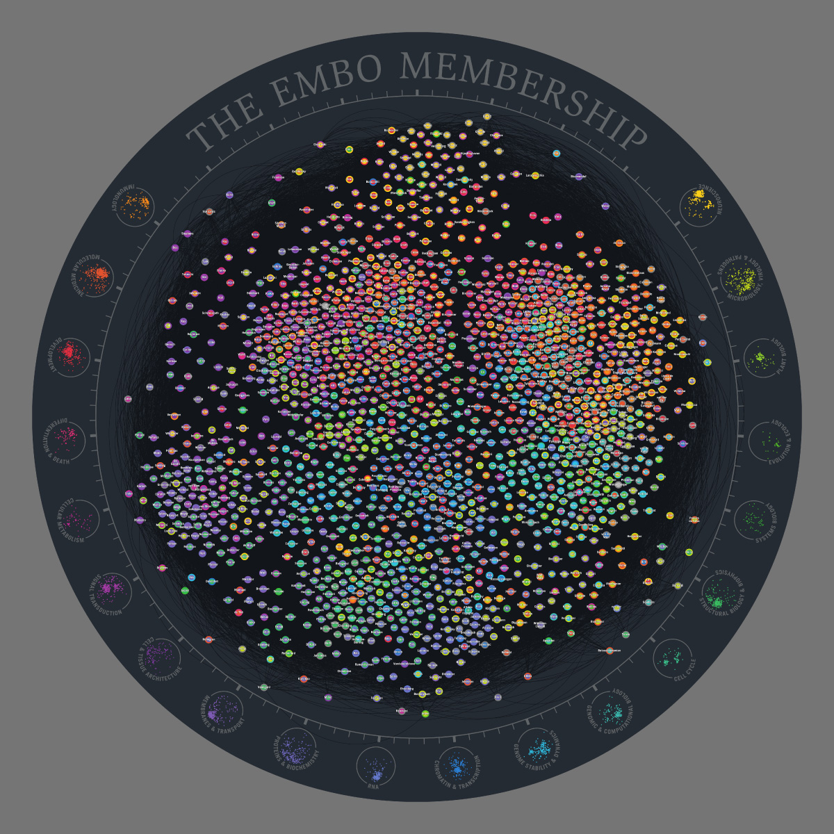 EMBO Members Network - carpet